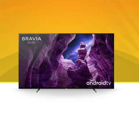 Sony BRAVIA TV picture