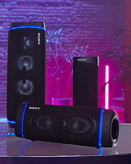 Wireless speakers category picture